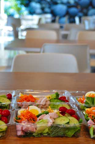 Corporate Catering:  Garden Salads for Lunch
